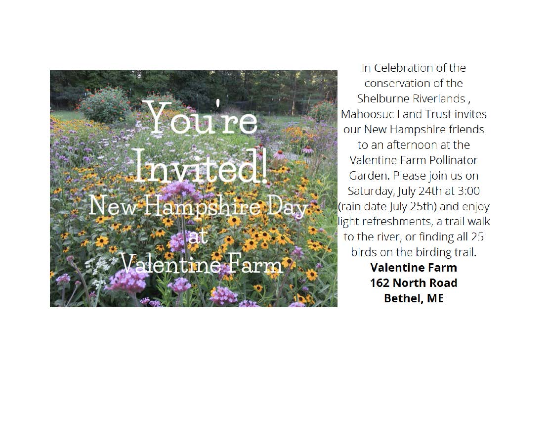 Valentine Farm Invitation